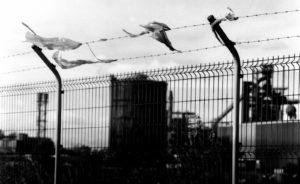 Les Arrières Pays - un film de Clara Drevet